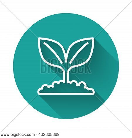 White Line Plant Icon Isolated With Long Shadow Background. Seed And Seedling. Leaves Sign. Leaf Nat