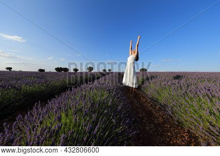 Excited Woman Wearing White Dress Raising Arms In A Lavender Field