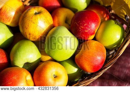 Fresh Delicious Natural Apples Different Varieties In A Basket Close - Up - Yellow, Green, Red. Autu