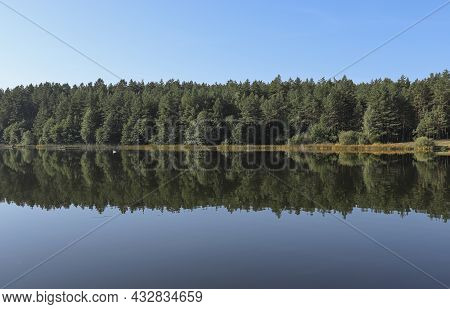 Summer Serene Symmetry And Harmony Landscape With Green Forest, Woods Reflection In Lake Water, Clea