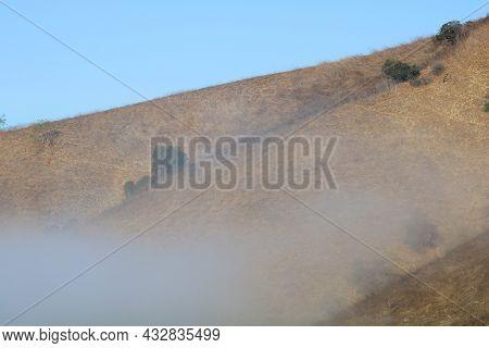 Fog Blanketing A Rural Hillside Covered With Rural Grasslands And Chaparral Plants Taken At The Sout
