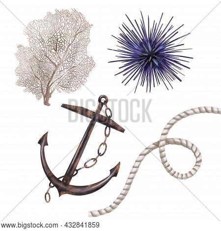 Watercolor Anchor, Coral, Seagrass And Rope With Knot. Marine Theme. Isolated Illustration On A Whit