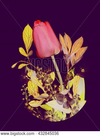 Happy Womens Day Banner With Photo Of Spring Flowers Bouquet Of Red Tulip, Bird-cherry Tree Flowers