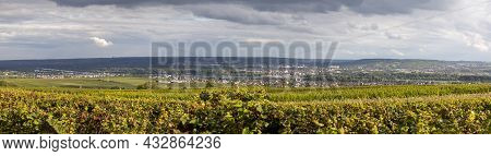 View To The Rhine Valles In The Reheingau With Ripe Grapes In The Vineyards At Winkel, Germany