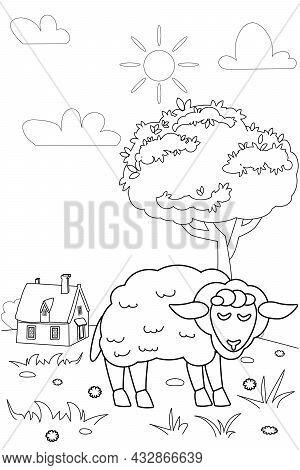 Cute Sheep Farm Animals Coloring Book Educational Illustration For Children. Rural Landscape Colouri