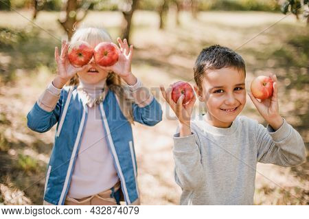 Boy With Apple Holding On Head In The Apple Orchard. Beautiful Girl Eating Organic Apple In The Orch