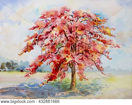 Abstract Painting Watercolor Landscape Red Color Of Peacock Flower In Garden Beautiful Forest Sky Ba
