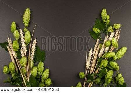 Wheat Beer Concept Background. Cones Of Hops And Wheat Ears