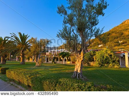 Park in Sveti Stefan - Montenegro - architecture and nature background