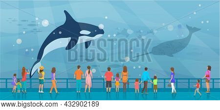 People Watching Underwater Scenery With Large Whales In Oceanarium. Underwater Fauna With Marine Wor