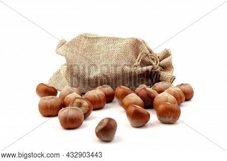 Fresh Hazelnuts In A Canvas Bag On White Background