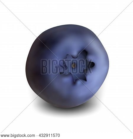 Blueberry Natural Vitamin Season Wild Berry Vector. Agricultural Juicy Blueberry Bio Food. Healthy D