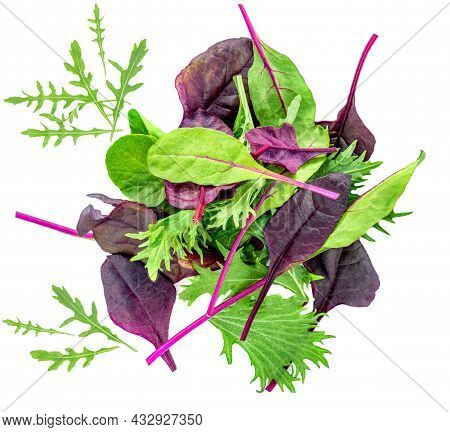 Fresh Salad Leaves Mix Isolated On White Background.  Mixed Salad With Spinach, Chard, Lettuce Top V