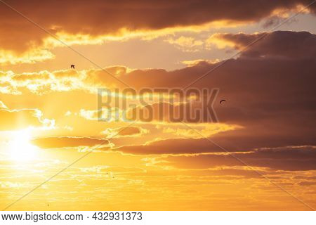 Sunset Dramatic Sky Clouds With Sunbeam And Flying Birds