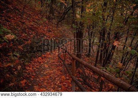 Beautiful Country Side Vibrant Autumn Landscape Trail With Rural Palisade And Stone Wall Decorative