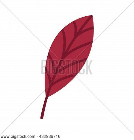 Reddened Leaf Of A Walnut Tree. Autumn Element, Clipart, Object, Item For Graphic Design. Cute Red F