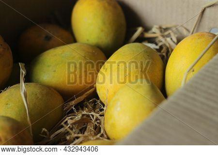 Alphonso Mangoes Kept On Hay, Inside The Packing
