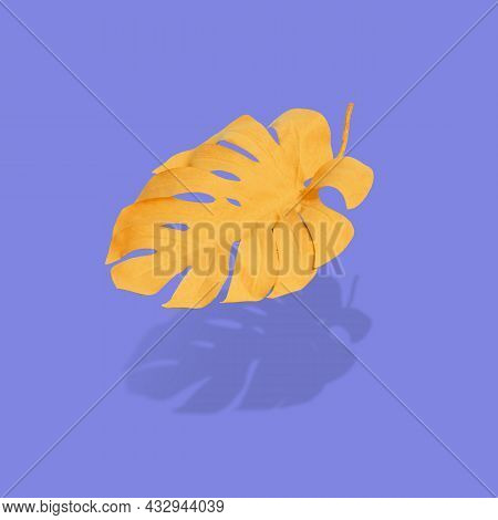 Abstract Design With Autumn Yellow Monstera Leaf  Floating Above Purple Surface.