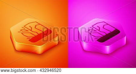 Isometric Glacier Melting Icon Isolated On Orange And Pink Background. Hexagon Button. Vector