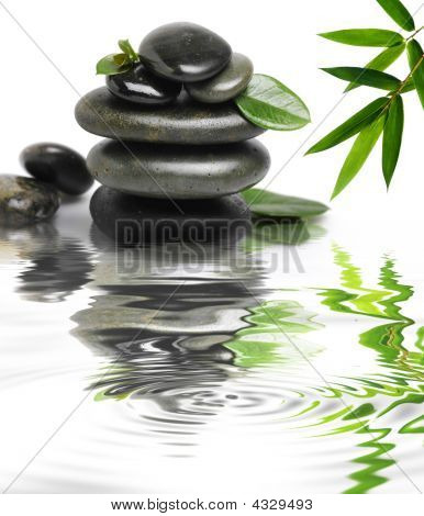 Wet Stones With A Green Leafs In The Water