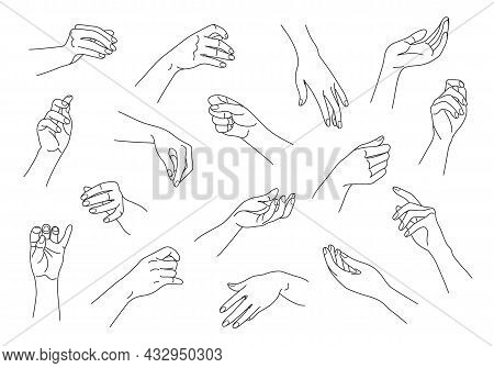 Collection Of Monochrome Woman Hands In Various Positions. Outline Female Hands Set. Black And White