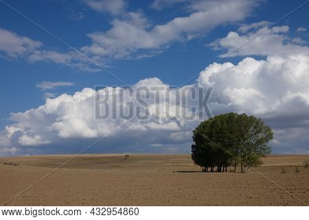 Terrestrial Climate Landscape, Dry Fields, Poplar Trees And Dense Clouds In The Sky,