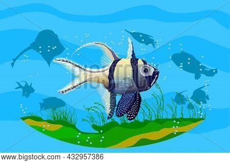 Ocean Underwater Background With Fishes. Aquarium With Exotic Fish. Deep Ocean Sea Life Scene. Save