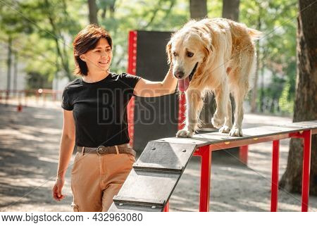 Girl training golden retriever dog outdoors. Young woman with doggy pet in the park together