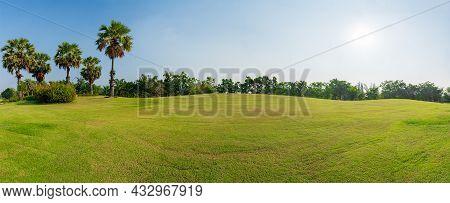 Panorama Green Grass On  Golf Field