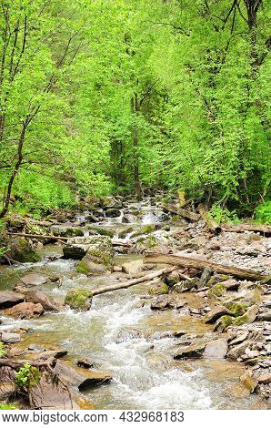 A Stormy Stream Of A Rapid Mountain River, Bending Around Stones And Felled Trees, Flows Through A S
