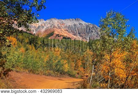Bright Aspen trees along Ophir pass road in front of Silver mountain in Colorado