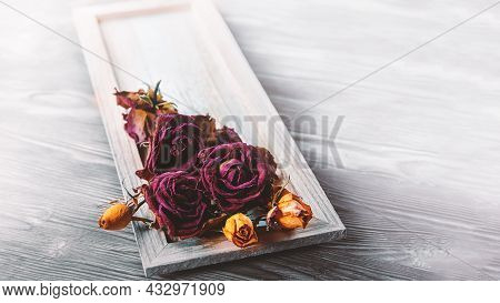 Dry Rose Flower Close-up On A Pink Background. Minimal Flower Card. Interior Poster. Dry Tea With A
