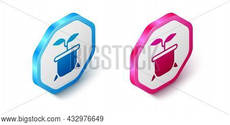 Isometric Plant In Pot Icon Isolated On White Background. Plant Growing In A Pot. Potted Plant Sign.