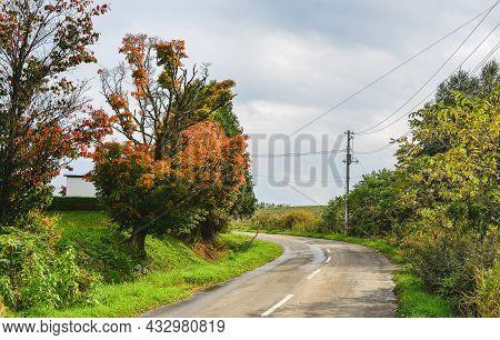 Rural Road In Furano, Japan