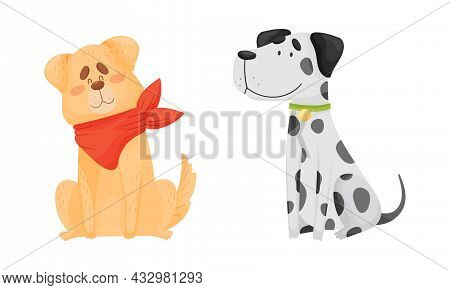 Funny Dog With Collar As Four-legged Friend And Domestic Pet Vector Set