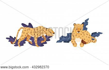 Spotted Leopard Or Jaguar With Yellow Skin Standing And Sitting In Tropical Leaves Vector Set