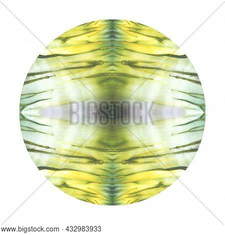 Fine Yellow And Green Color Watercolor Paint Round Circle Texture Isolated On White Background With
