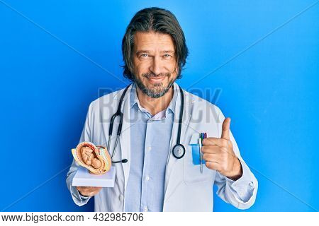Middle age handsome gynecologist man holding anatomical model of female uterus with fetus smiling happy and positive, thumb up doing excellent and approval sign