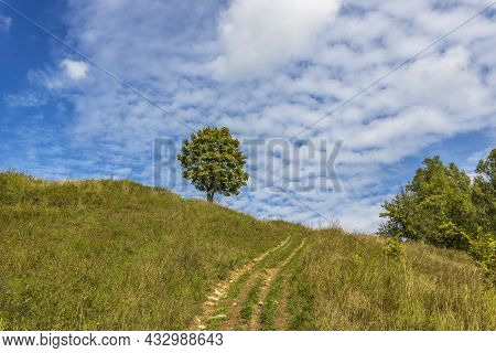 A Tree On Top Of A Hill Against A Blue Sky With Clouds. The Road To The Top Of The Hill. Lonely Tree