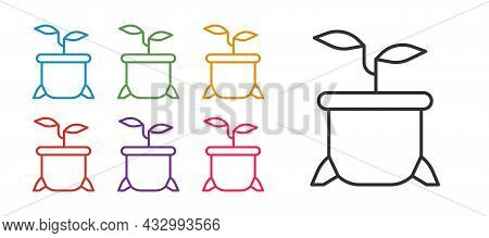 Set Line Plant In Pot Icon Isolated On White Background. Plant Growing In A Pot. Potted Plant Sign.