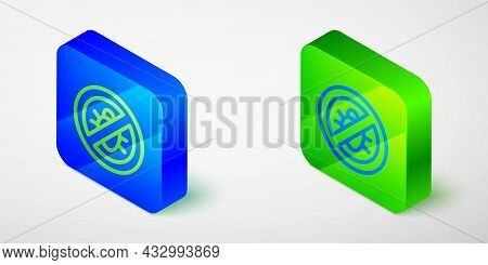 Isometric Line Stop Colorado Beetle Icon Isolated Grey Background. Blue And Green Square Button. Vec