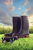 Rubber boots in grass with toy cow and bright sky poster
