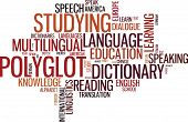 Vector polyglot typographical wordcloud with mutiple words pertaining to language study dialogue and translation in different sized fonts and different orientations poster