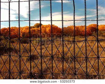 Fence Me Out
