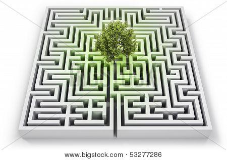 Ecological challenge