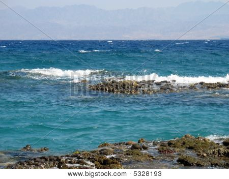 Coastal reeves during outflow on Red sea. Egypt Taba. poster