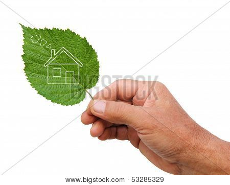 Eco House Concept, Hand Holding Eco House Icon In Nature Isolated