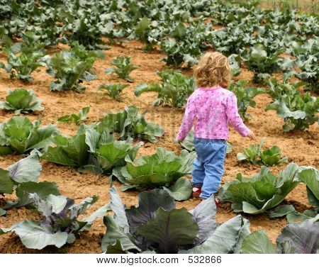 Child In The Cabbage Patch