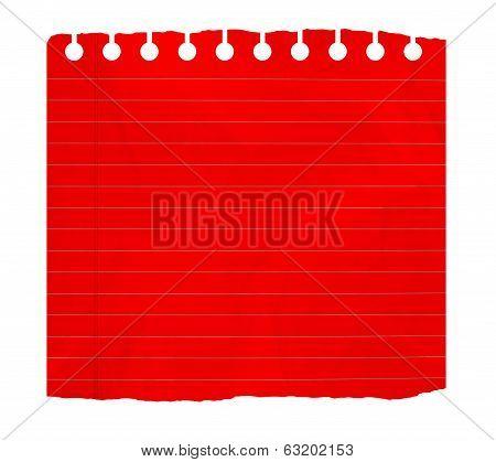 Rip Notebook Sheet