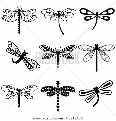 Dragonflies, Black Silhouettes On White Background